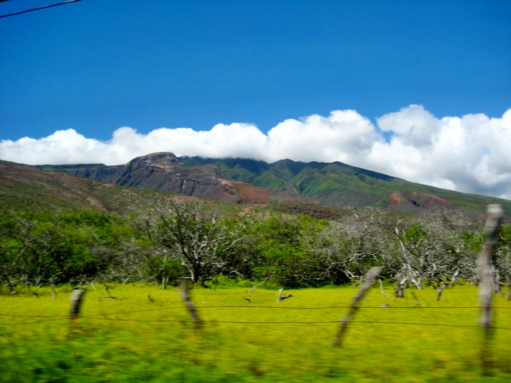 Rental Car Houston >> Molokai Pictures | Photo Gallery of Molokai - High-Quality Collection
