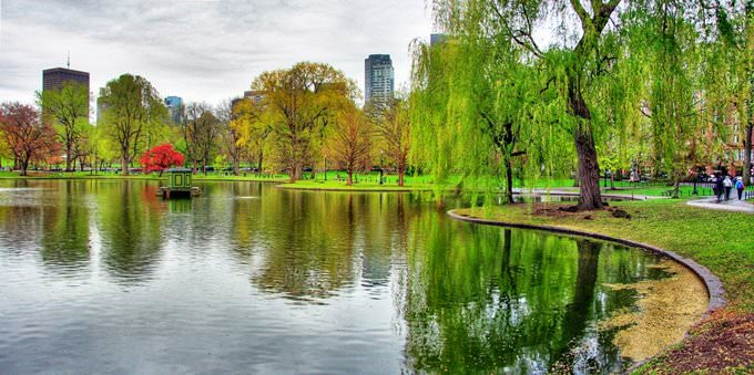 Boston Public Gardens Panorama
