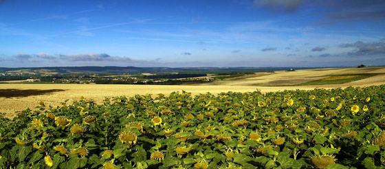 Foto panorámica de Borgoña