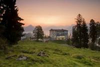Отель Hotel Villa Honegg