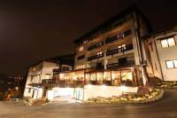 Отель Hotel Classic Inn