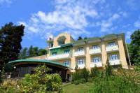 Отель Zelenaya Roscha VIP Hotel