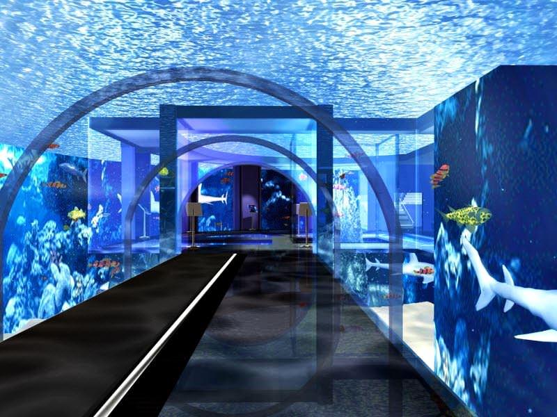 aquarium of genoa series the coolest and largest