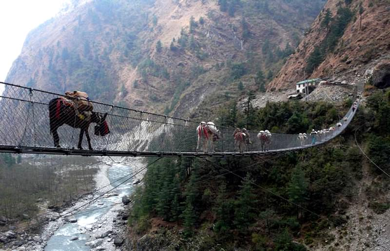 Hanging bridge of ghasa series 39 most dangerous bridges for World s coolest bridges