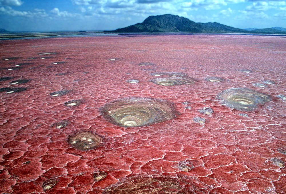 Image result for Lake Natron