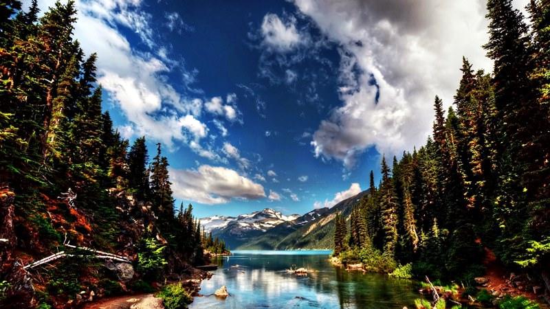 Йеллоустонский национальный парк | Серия 'Необъятные заповедники ...