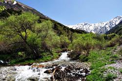 Aksu Zhabagly Reserve, Kazakhstan