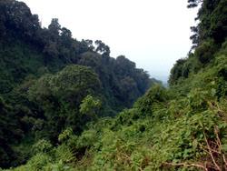 Alien Cemetery of Rwanda, Rwanda