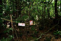 Aokigahara Jukai Forest, Japan