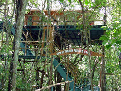 Ariau Jungle Tower Hotel, Brasilien