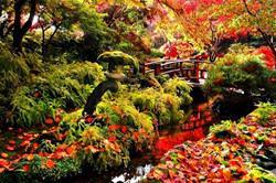 Butchart Gardens, Kanada