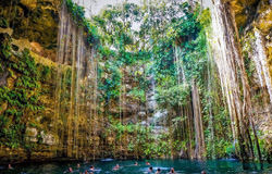 Cenotes of Yucatan, Mexico