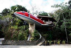 Дом-самолет на деревьях