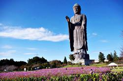 Daibutsu Ushiku, Japan