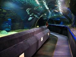 Duman Oceanarium, Kasachstan