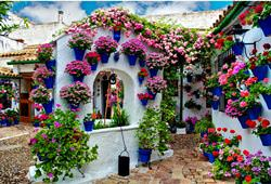 Floral House in Cordoba, Spain