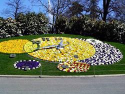 Flower Clock in the English Garden