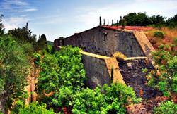 Форты Росе