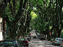 Goncalo de Carvalho Street