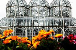 Оранжерея ботанического сада Куритибы, Бразилия