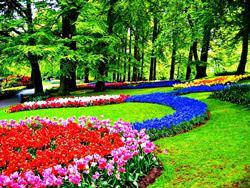 Keukenhof Blumenpark, Niederlande