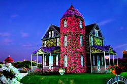 Flower House in Dubai Miracle Garden Park