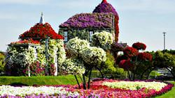 Flower House in Dubai Miracle Garden Park, United Arab Emirates