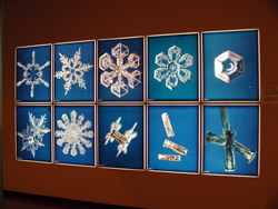 Museum of Snowflakes