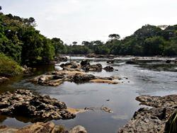 Заповедник Окапи, Конго