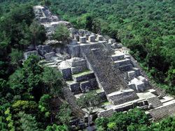 Calakmul Pyramiden