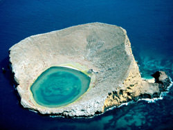 Кратер Рокас Бейнбридж, Galapagos