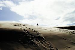 Sanddünen von Skagen