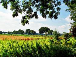 Schokland und Umgebung, Niederlande
