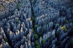 Bosque de Piedras Shilin, China
