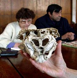 Skull Rhodope, Bulgaria