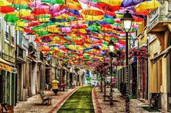 Soaring Umbrellas Street, Portugal