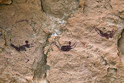 Пещера Пловцов, Египет