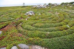 The Great Zayatsky Labyrinth, Russia