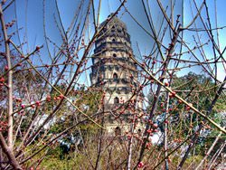 Пагода на холме Тигра