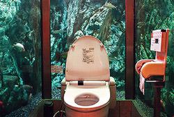 Toilet Tank, Japan
