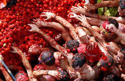 Фестиваль Томатино, Испания