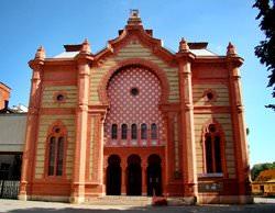 Ужгородская синагога, Украина