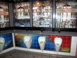 Vienna Opera Toilet, Austria
