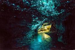 Waitomo Glowworm Höhle, Neuseeland