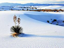 White Sands National Monument, Vereinigte Staaten