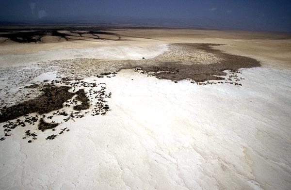 Afar-Senke, Djibouti