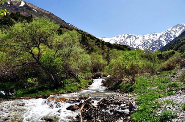 Aksu Zhabagly Reserve, Kasachstan