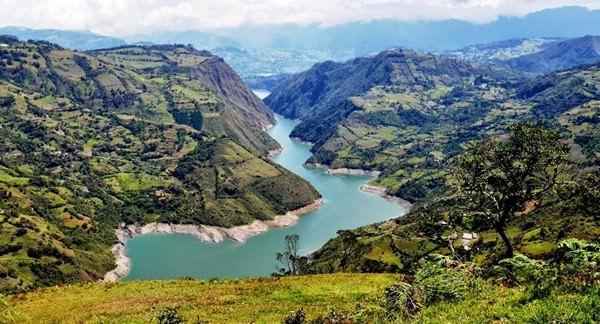 Alberto Lleras Dam, Colombia