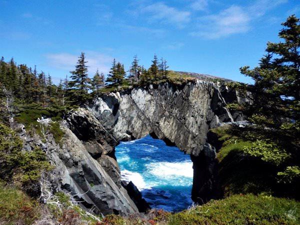 Arch Berry Head, Canada