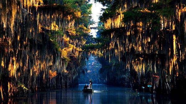 Caddo Lake, Vereinigte Staaten